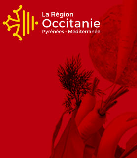 Producteurs et commerçants d'Occitanie