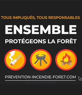 Protégeons la Forêt